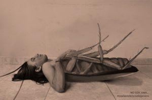 pintoras latinoamericanas no_soy_una_2_eliczabeth_castro
